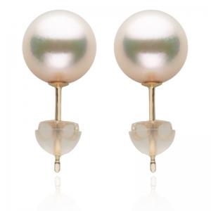 8.5-9 Akoya Pearl 18KG Stud Earrings