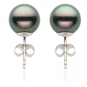 10-11mm Black Tahitian Pearl 18KW Stud Earrings