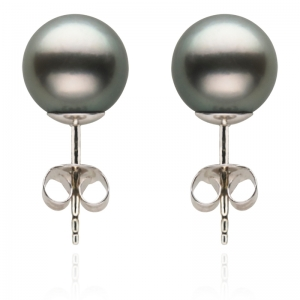 9-10mm Grey Tahitian Pearl 18KW Stud Earrings